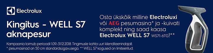 Kingitus - WELL S7 aknapesur